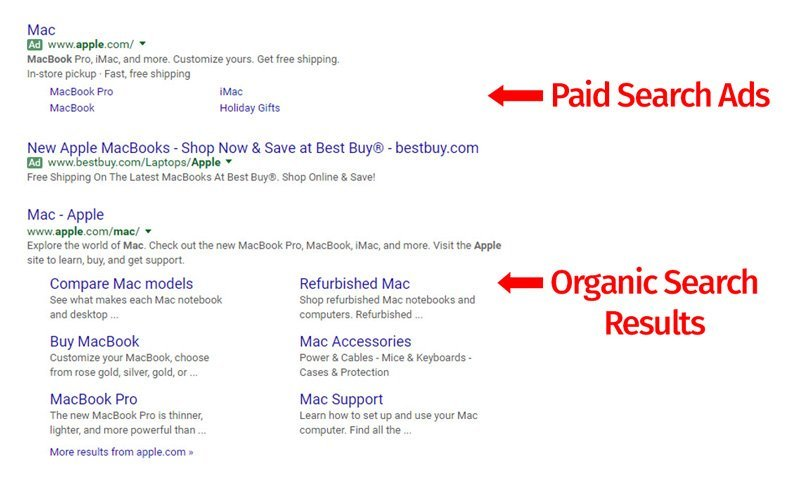 Paid-Search-and-SEO-Results